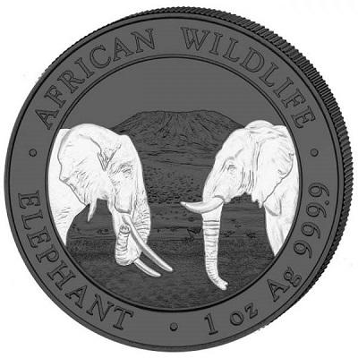 African-Wildlife-srebro-3